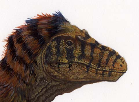 "Don't call me ""Fluffy."" Even with the inclusion of feathers, T. rex was the apex predator."