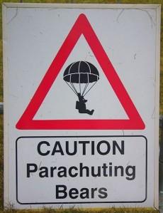 Beware falling bears