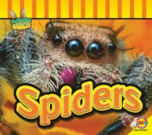 spiders1