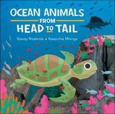 ocean_animals_from_head_to_tail