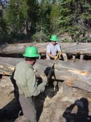 trail crew1