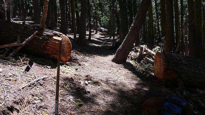 trail crew2