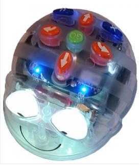 BlueBot robot